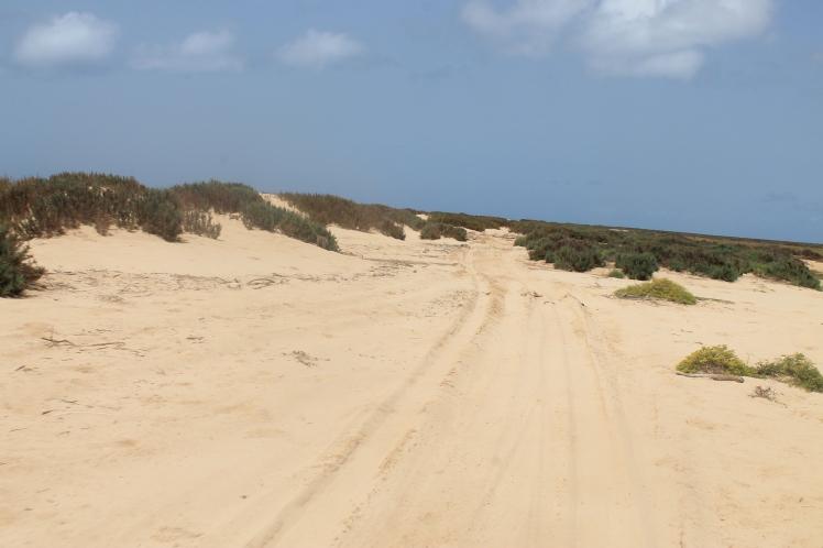 Deserto Viana